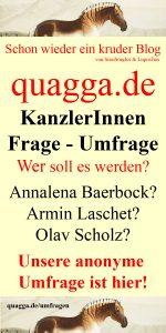 Pinterest Pin Bild Politik Umfragen: Die Kanzlerinnen Frage Umfrage im Quagga Blog by SissiSorglos & LuposFun Infografik